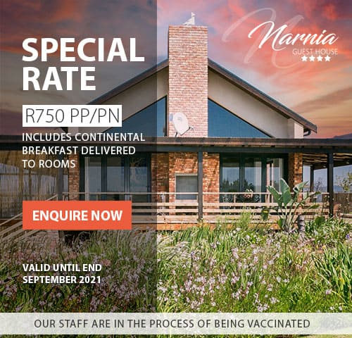 narnia guesthouse sept21 special